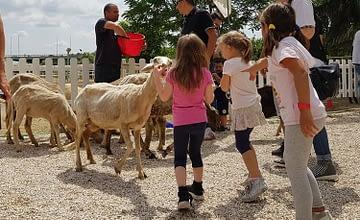 Hai bambini dai 3 ai 6 anni? Ferma subito un posto nei nostri campi estivi: laboratori creativi, giochi d'acqua e i nostri animali vi aspettano!